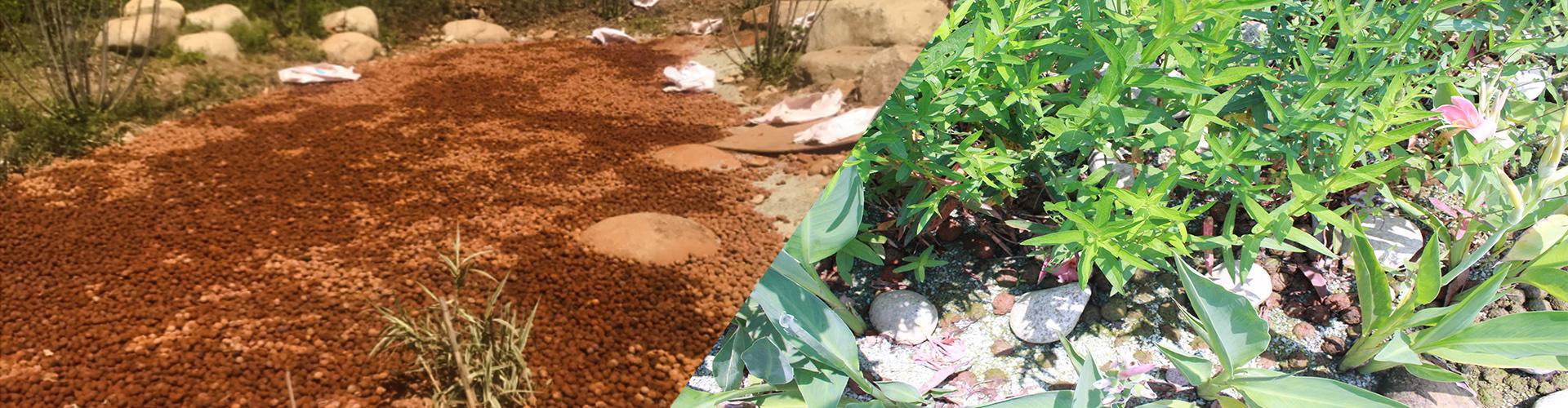 武汉倒口湖公园项目:蓄水陶土多孔特性有出色净水效果